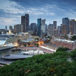 Luke Zeme Photography Jungle-City1-150x150 PHOTO OF THE DAY- Christmas in Sydney