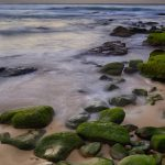 Green-Rock-Sunrise-at-bondi-beach-sydney